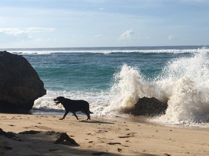 Pantai Karma 4